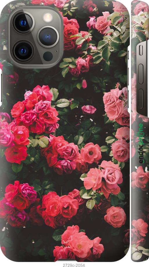 Куст с розами