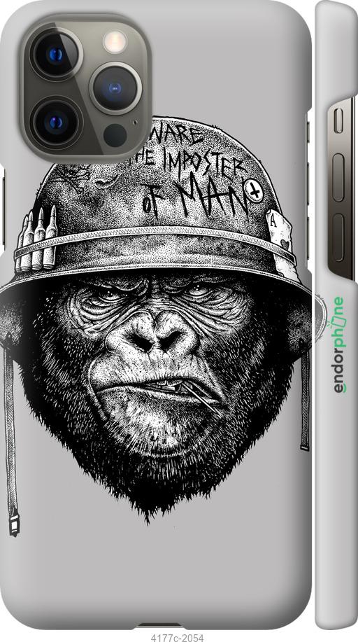military monkey