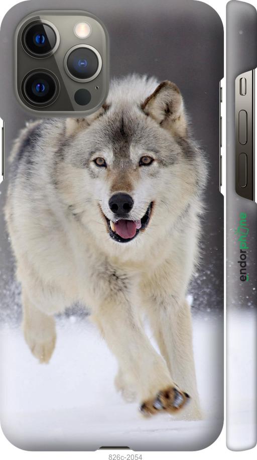 Бегущий волк