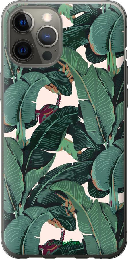 Банановые листья