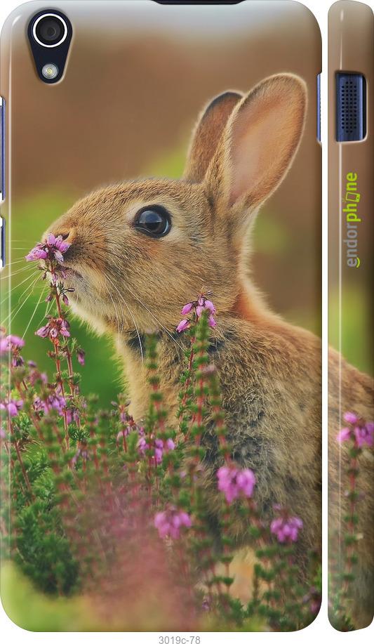 Кролик и цветы