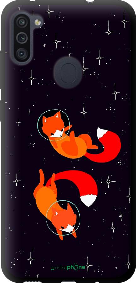 Лисички в космосе