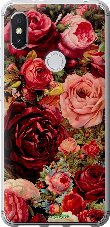 Цветущие розы